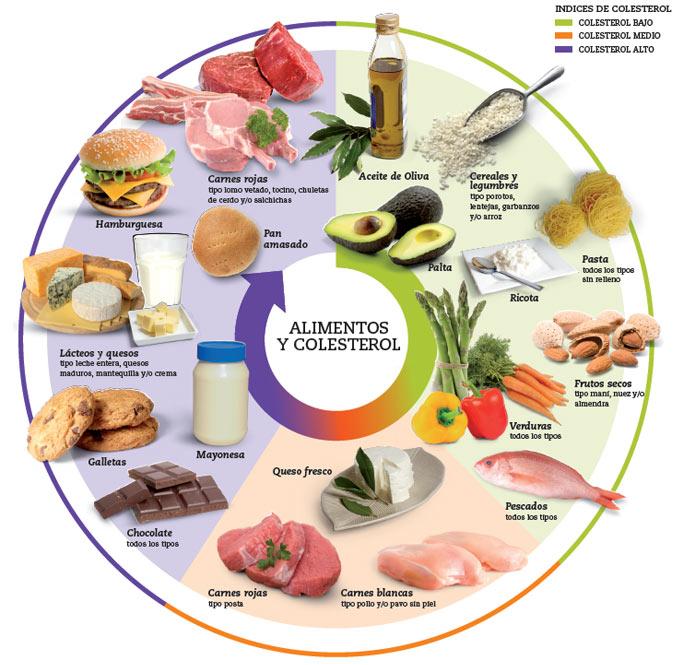 colesterol alimentos