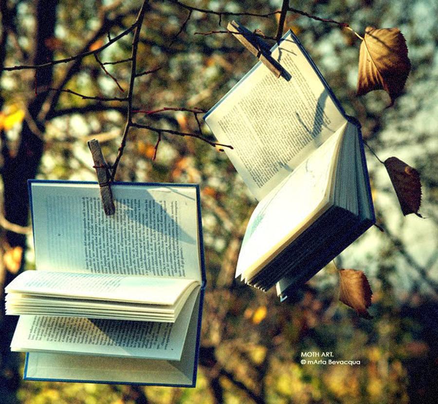libro_libre