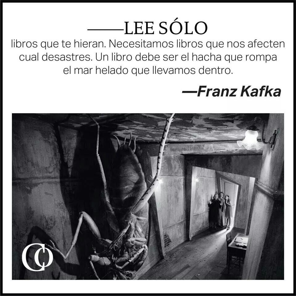 Buitres, Franz Kafka, documental, texto